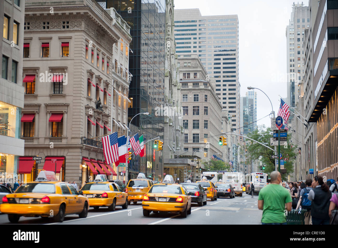 Traffic in the metropolis, yellow cabs, taxis in 5th Avenue, Manhattan, New York City, New York, USA, North America, - Stock Image