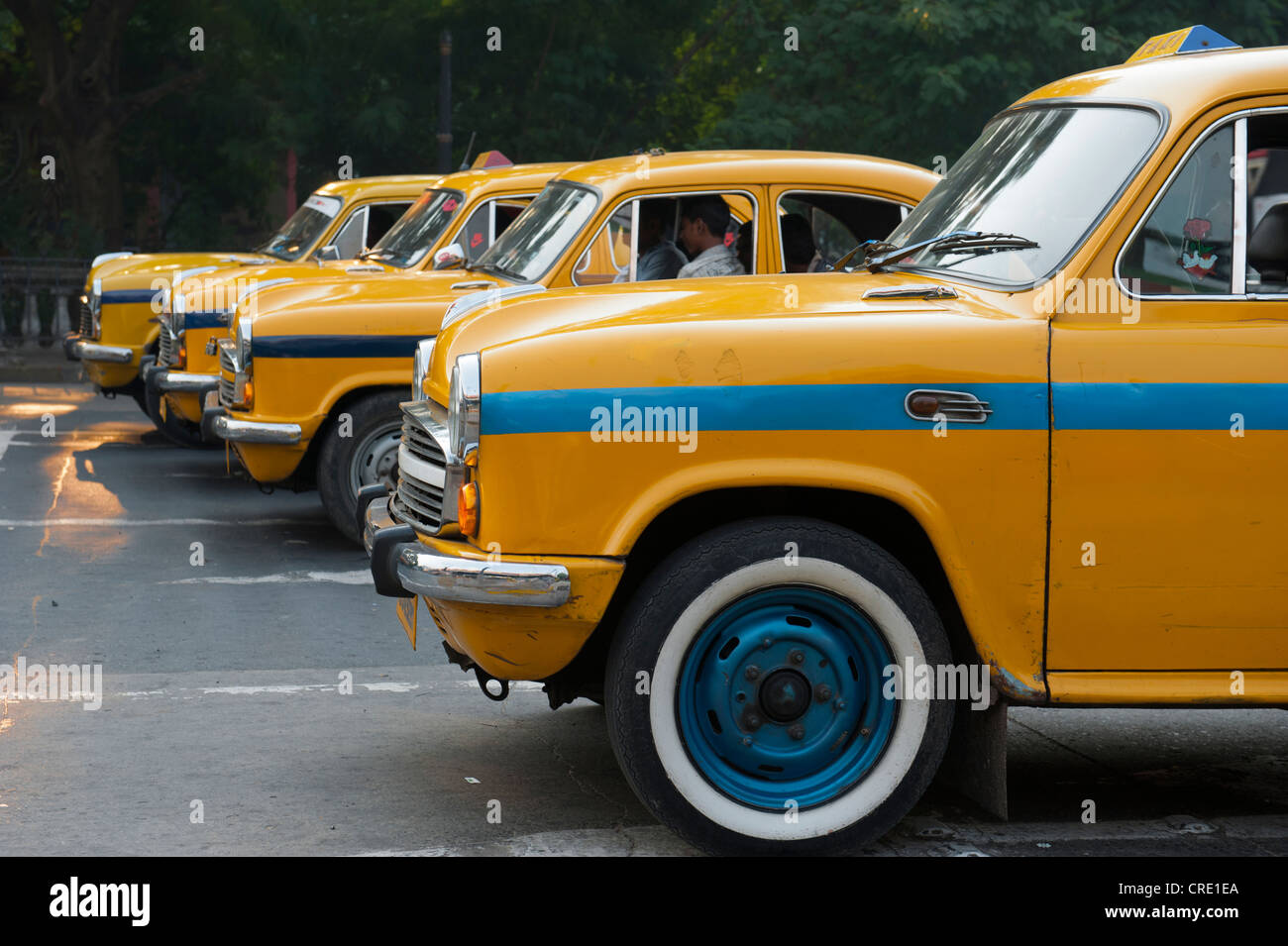 Transportation, four yellow Ambassador taxis in a row, Chowringhee, Calcutta, Kolkata, West Bengal, India, South - Stock Image
