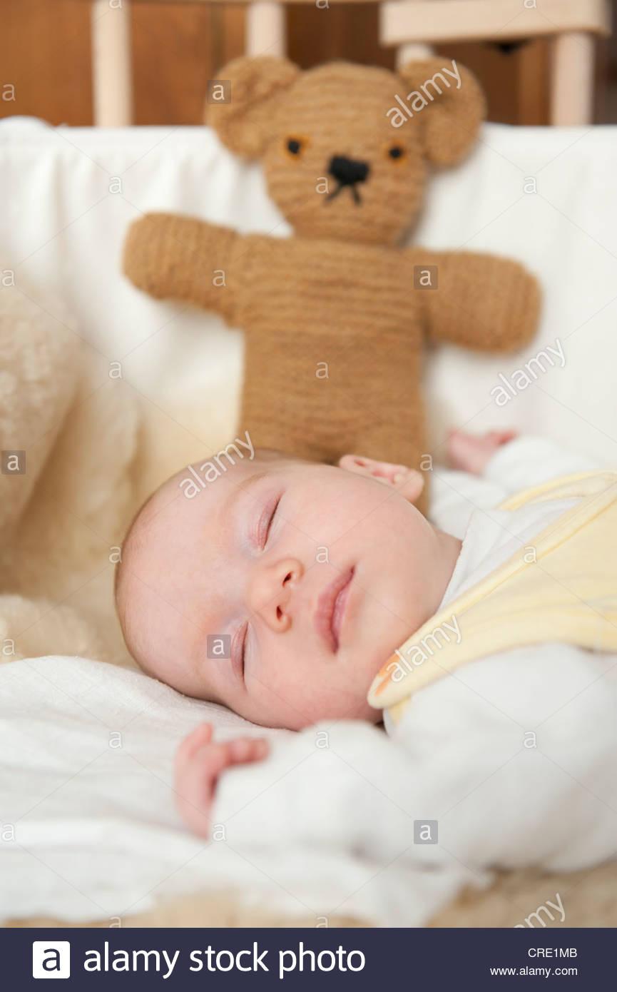 teddy bears resting stock photos teddy bears resting. Black Bedroom Furniture Sets. Home Design Ideas