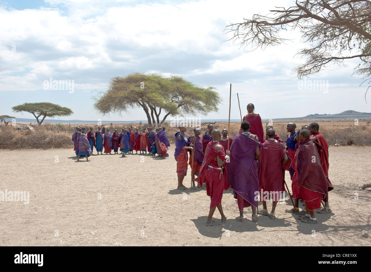 Ethnology, group of women, group of men, man jumping while dancing, Masai, village of Kiloki, Savannah - Stock Image