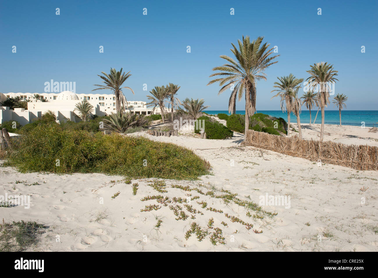 Lonely beach hotel, palm trees and ocean, Djerba island, Tunisia, Maghreb, North Africa, Africa - Stock Image
