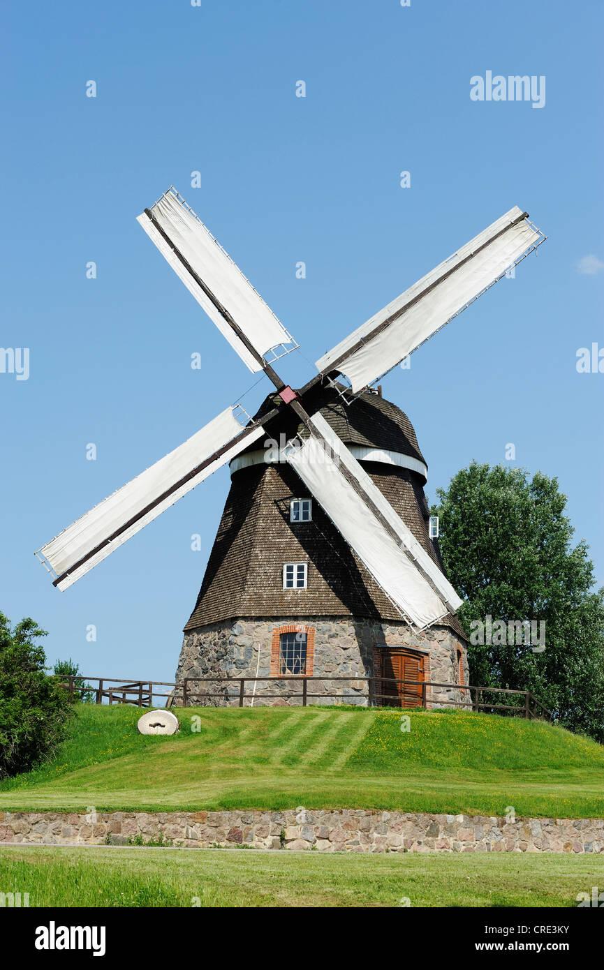 Windmill, Woldegk, Mecklenburg-Western Pomerania, Germany, Europe - Stock Image