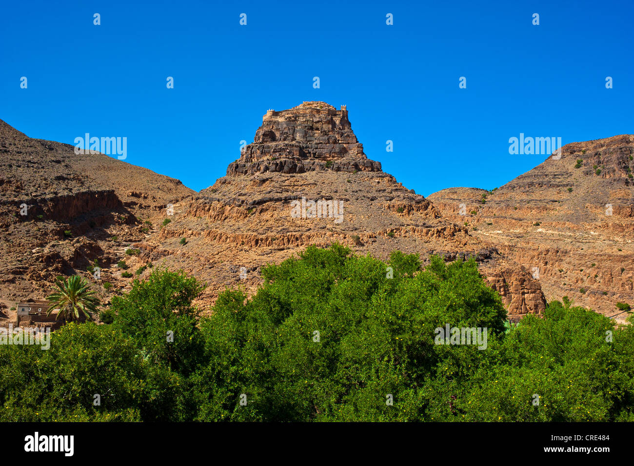 Id Aissa storage castle on a rocky peak, Anti-Atlas Mountains, southern Morocco, Morocco, Africa - Stock Image