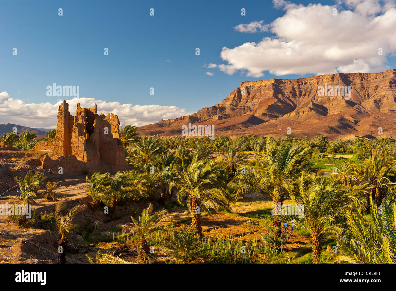 Ruined Kasbah, a former Berbers' residential castle built of adobe, and palm grove in front of the mountain - Stock Image