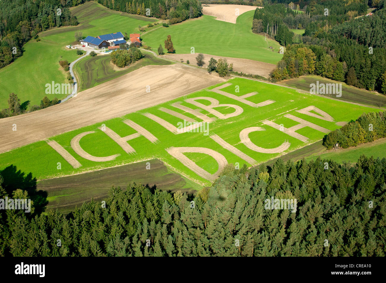 Aerial view of lettering 'ich liebe dich', German for 'I love you' on a field near Altrandsberg, - Stock Image