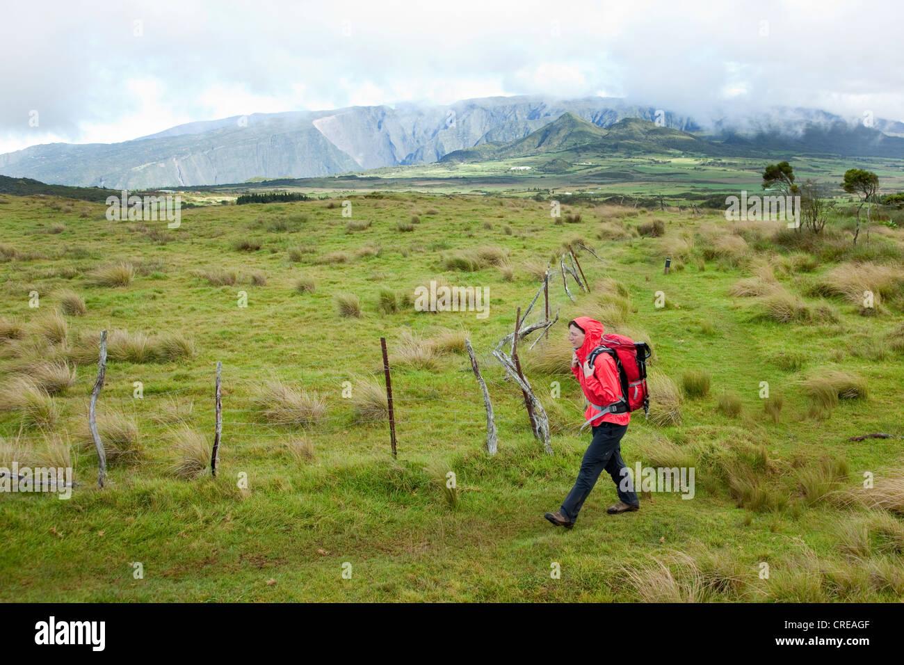 Hiker on the plateau Plaine des Cafres at Bourg-Murat, La Reunion island, Indian Ocean - Stock Image