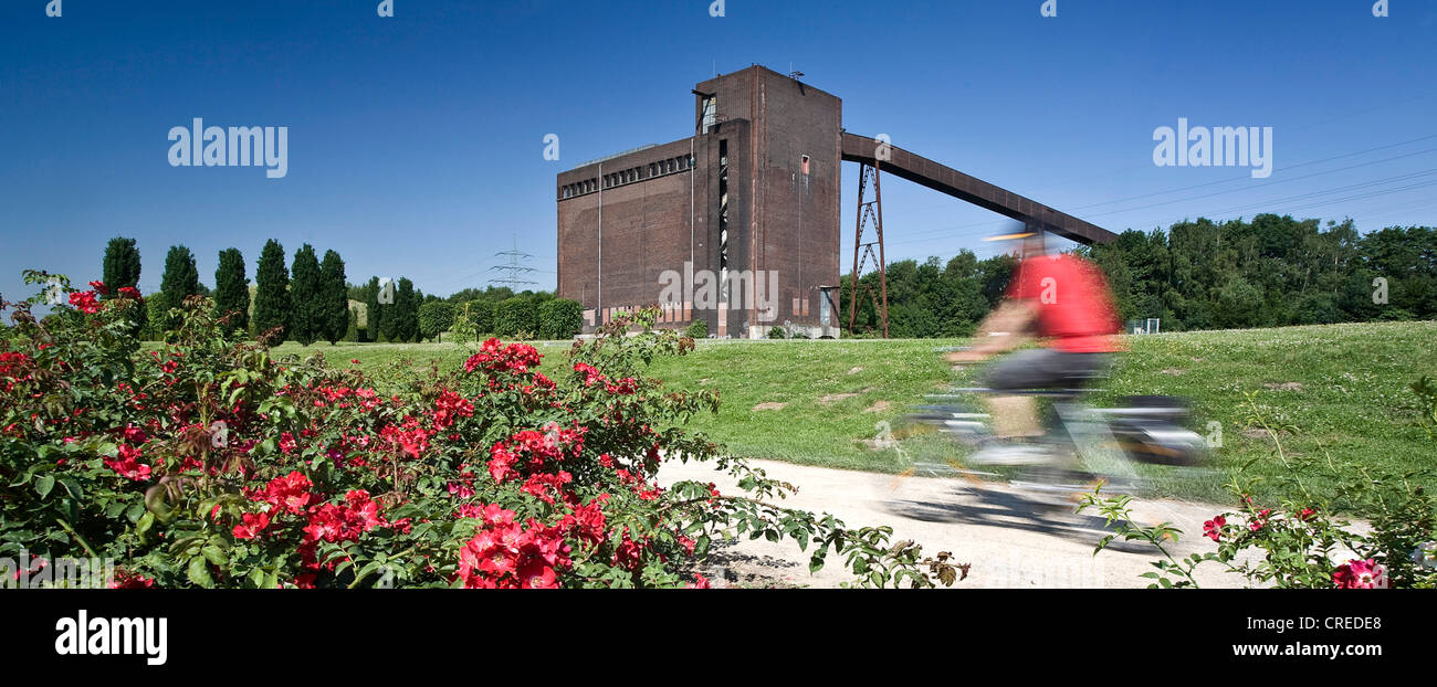 cyclist on the cycleway at the coal bunker at the Nordstern Park, Germany, North Rhine-Westphalia, Ruhr Area, Gelsenkirchen - Stock Image