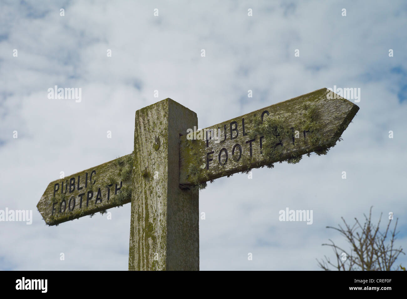 A public footpath signpost covered in lichen against a blue and cloudy sky south west coast path devon england - Stock Image