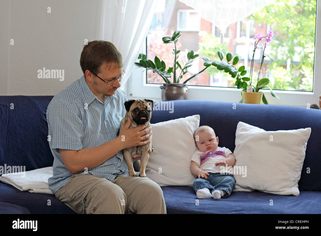 Pug (Canis lupus f. familiaris), man with male Pug and three month old baby on sofa in living room - Stock Image