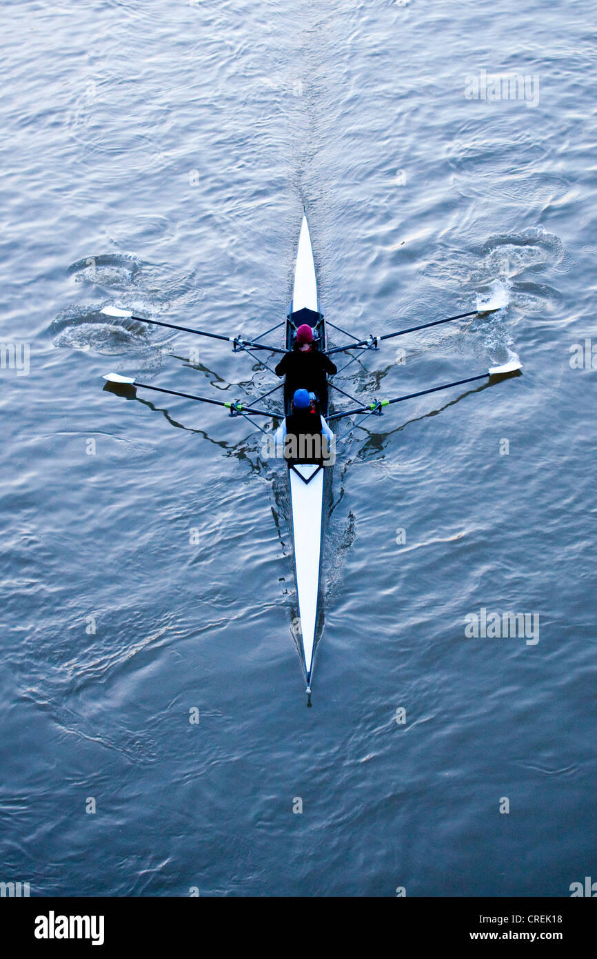 Rowers during training in a rowing boat, coxless pair on the Main River, Frankfurt am Main, Hesse, Germany, Europe - Stock Image