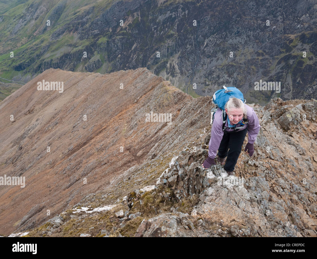 North ridge stock photos north ridge stock images alamy a female hillwalker reaches the top of the north ridge approach to crib goch the publicscrutiny Gallery