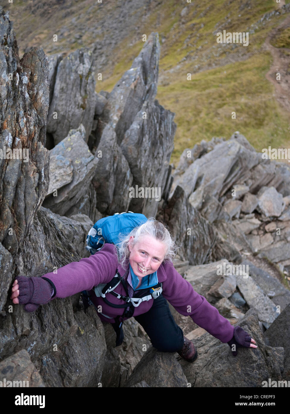 A female hill walker scrambling on Crib y Ddysgl - part of the classic Snowdon Horseshoe route - Stock Image
