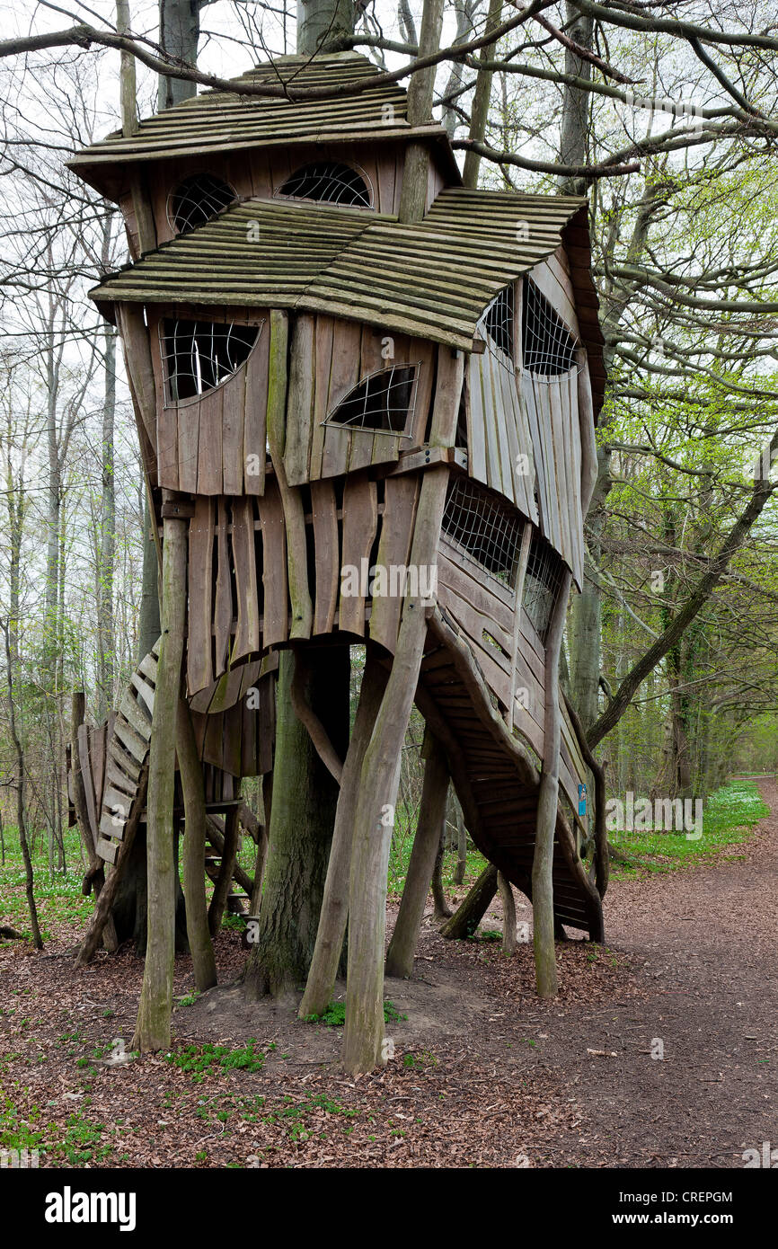 A crooked tree house in the woods - Stock Image