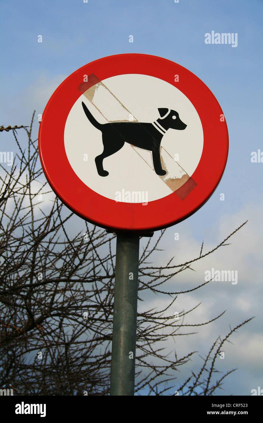 information sign dogs prohibited at Port Zelande, Netherlands - Stock Image