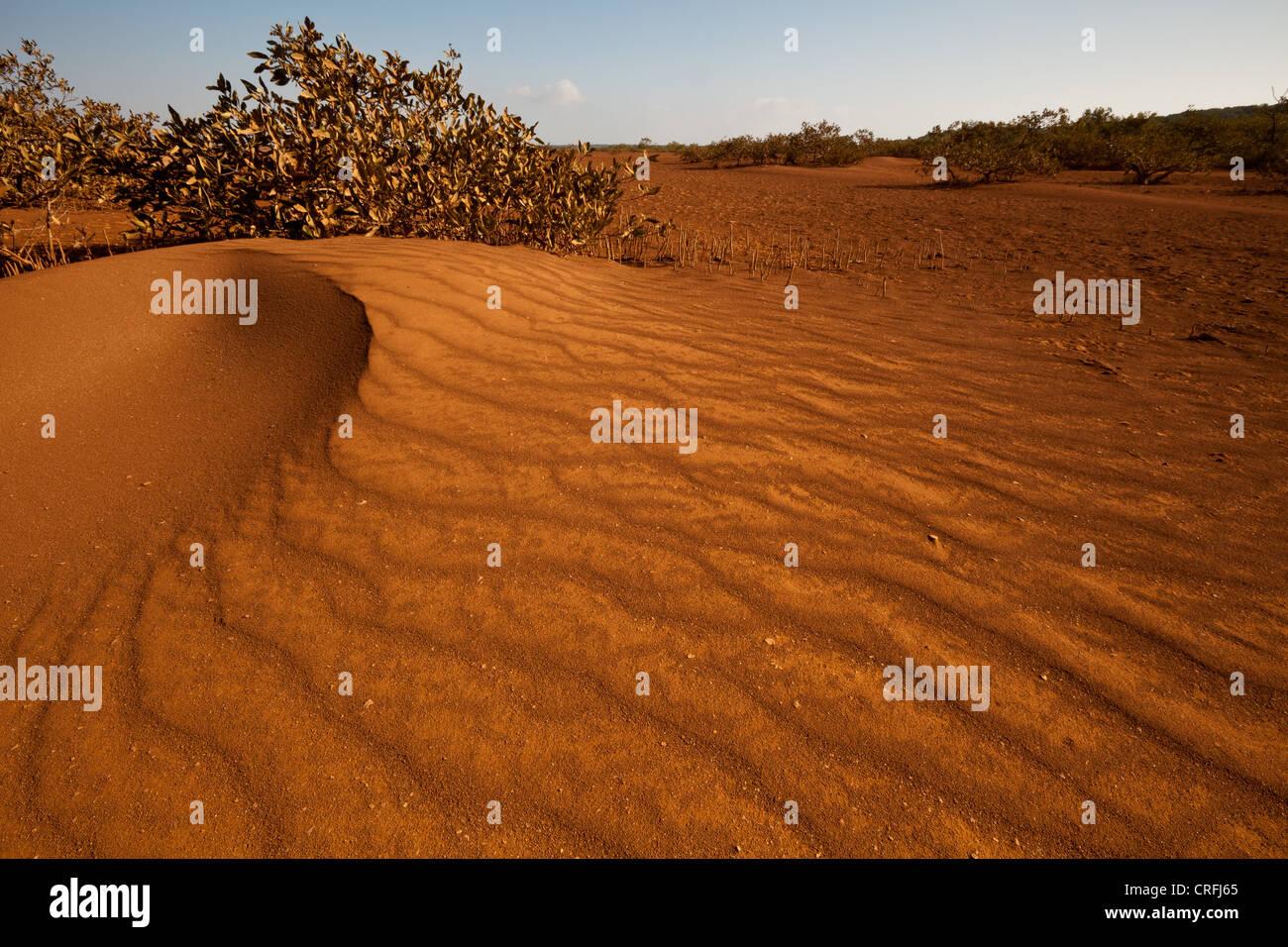 Sand dunes in Sarigua national park (desert), Herrera province, Republic of Panama. - Stock Image