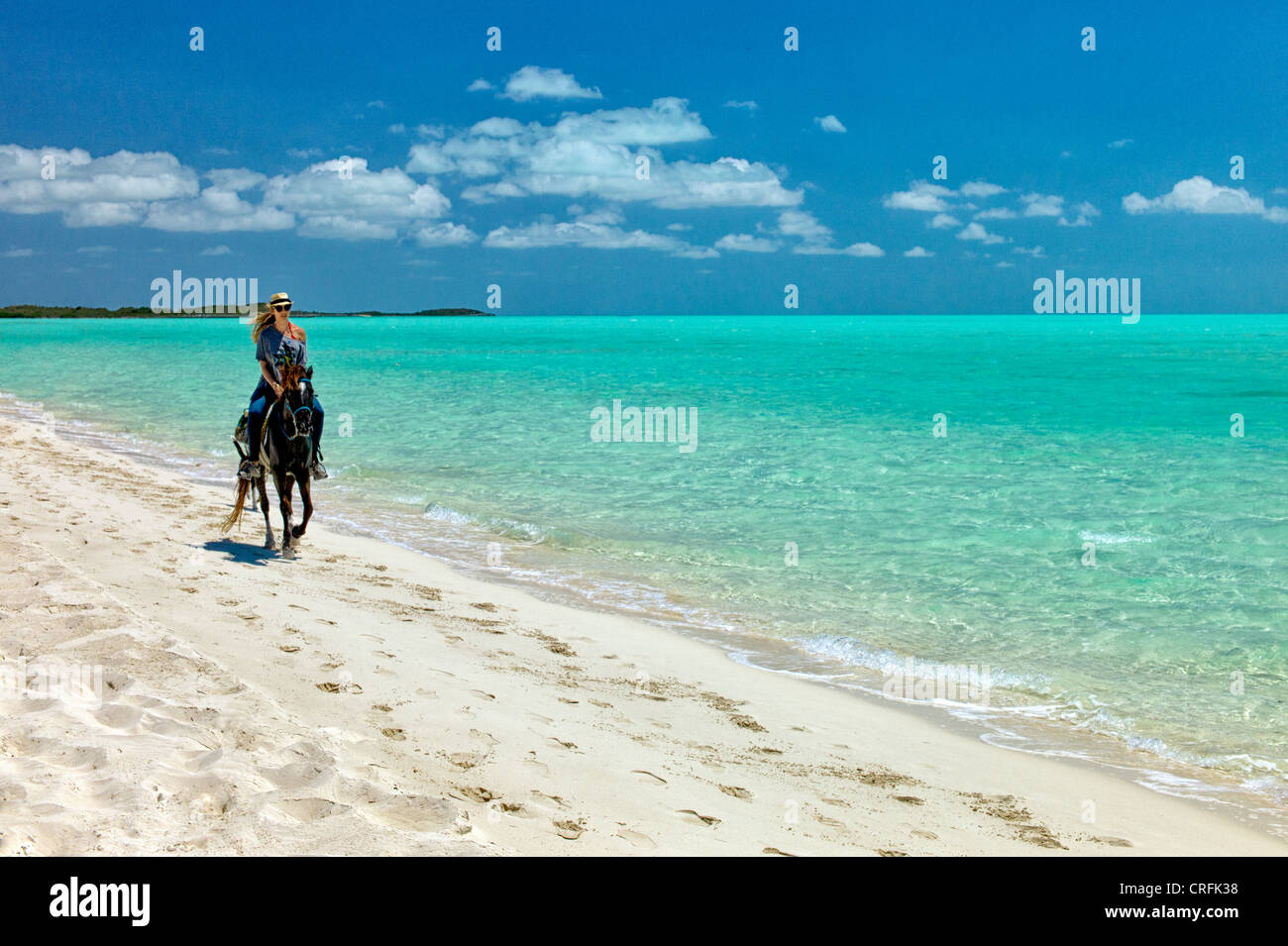 Horse rider troting on beach. Providenciales. Turks and Caicos.. - Stock Image