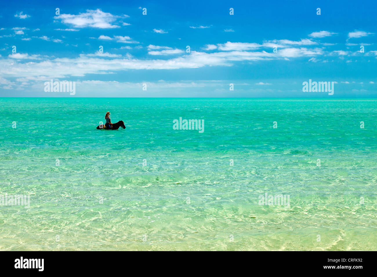 Horse riders in water. Providenciales. Turks and Caicos. - Stock Image