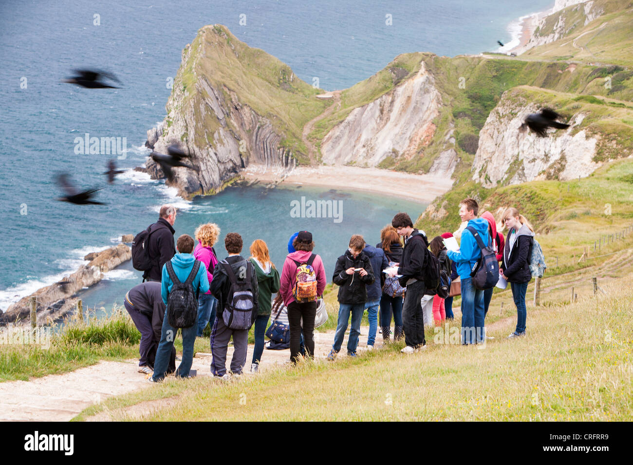 A school field trip on the cliff tops at Durdle Door on the Dorset coast near Lulworth, UK, with a flock of Rooks - Stock Image