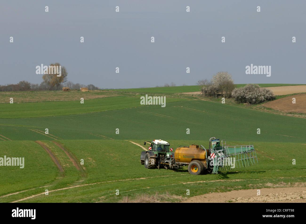 disposal of liquid manure, Germany Stock Photo
