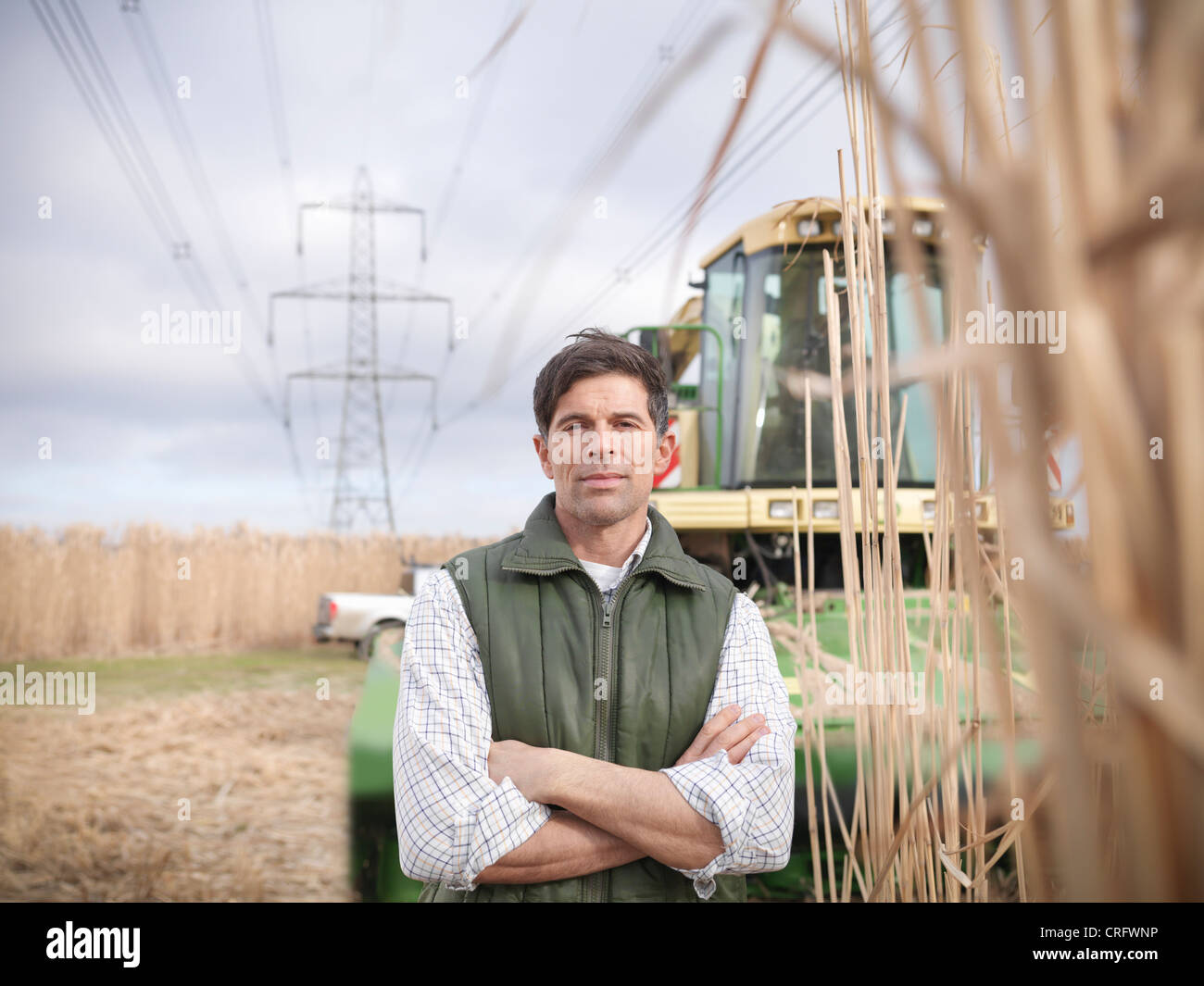 Farmer with tractor in elephant grass - Stock Image
