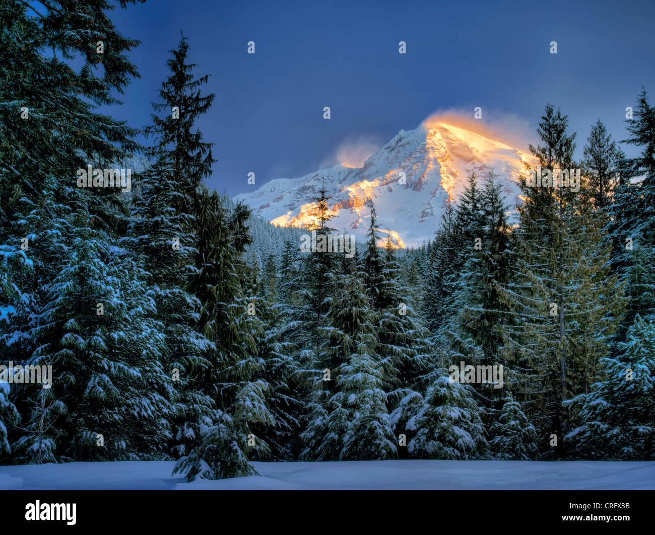 Mt. Rainier after snowstorm. Mt. Rainier National Park, Washington - Stock Image