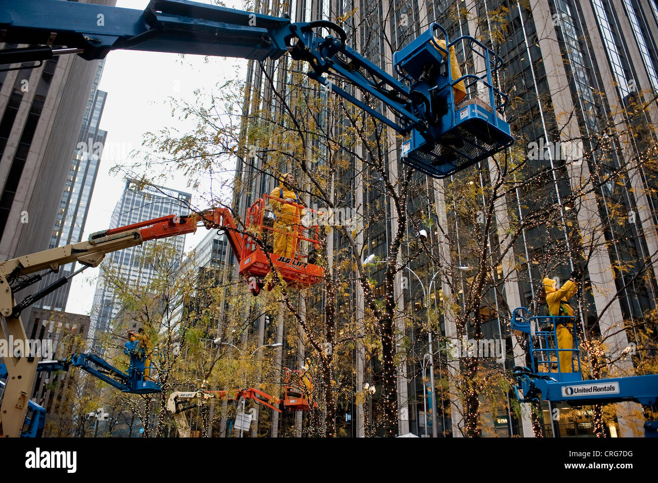 Workers wearing rain jackets are hoisted into the air on lifts as they attach holiday lights to trees. - Stock Image