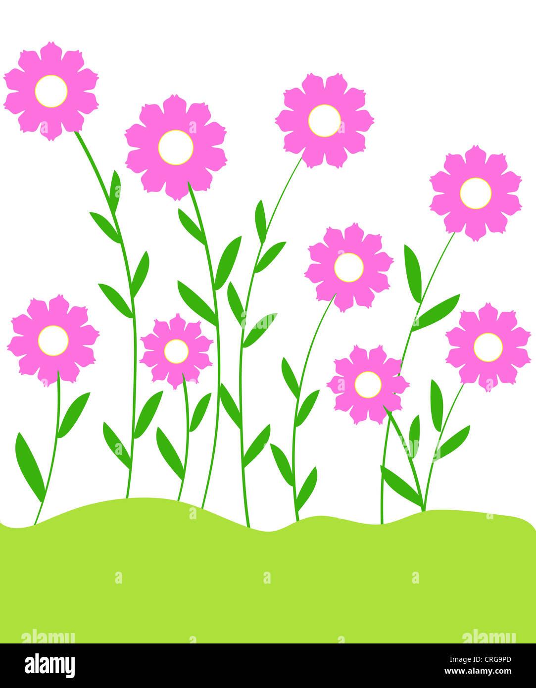 Pink flowering plants illustration Stock Photo