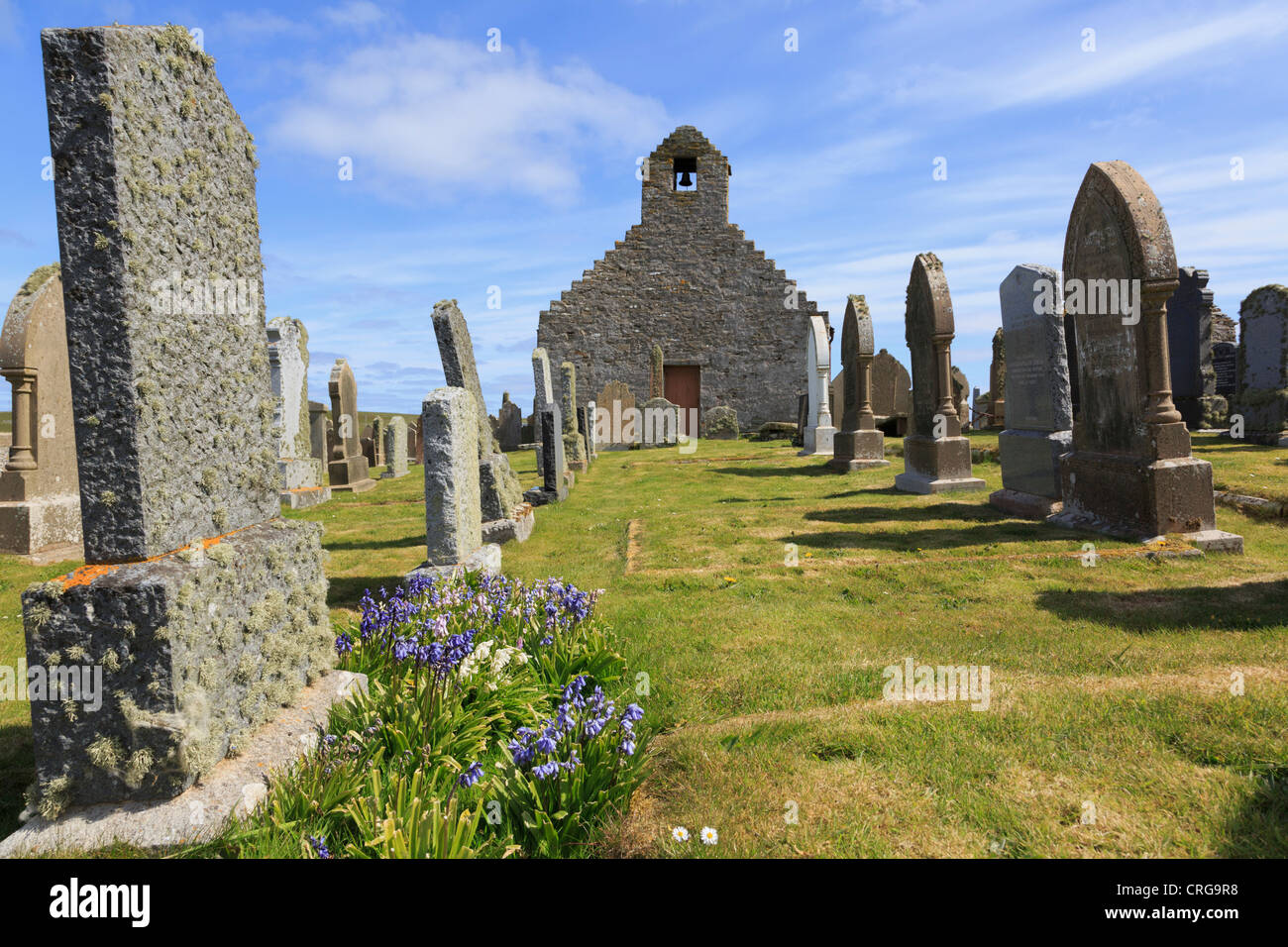Old St Mary's church and gravestones with bluebells in churchyard at Burwick South Ronaldsay Orkney Islands - Stock Image