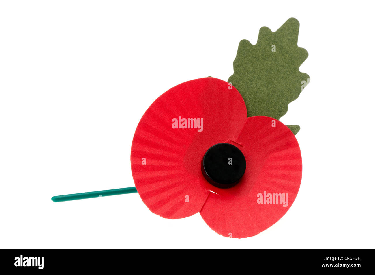 Remembrance poppy - Stock Image