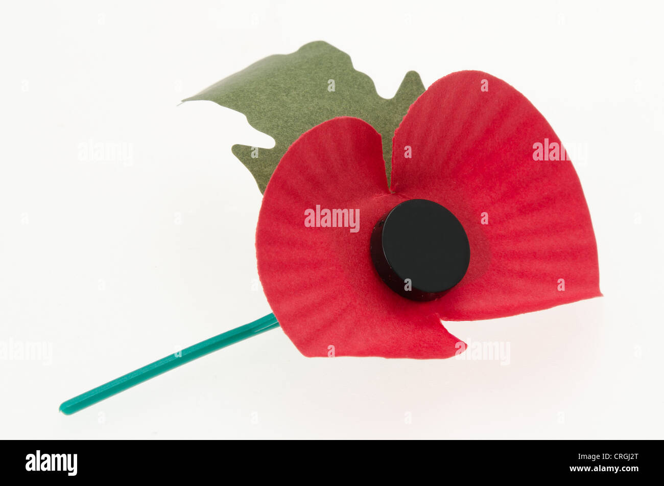 Worn Remembrance day poppy lying on its side - Stock Image
