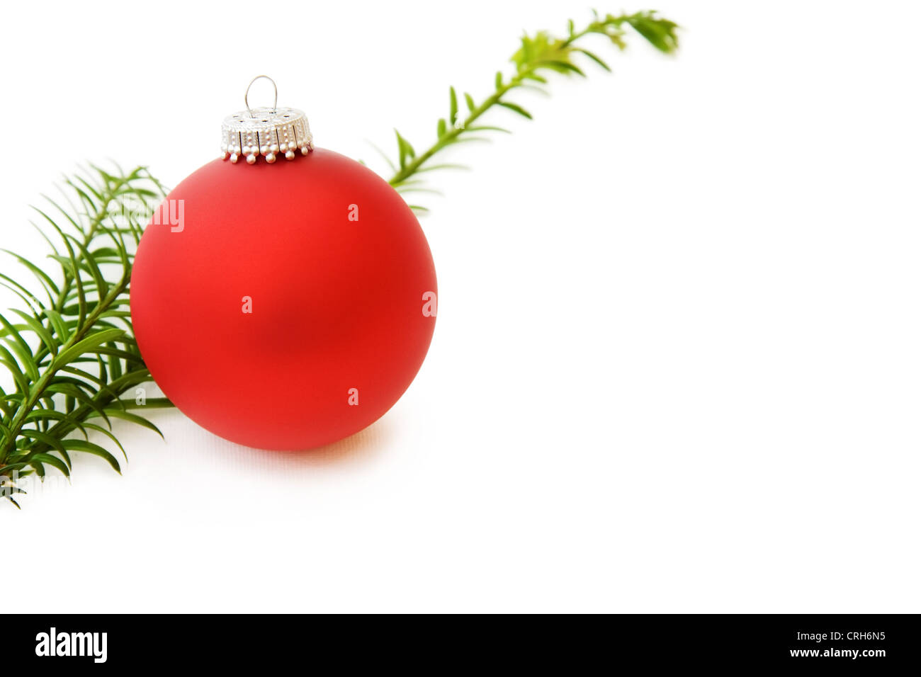 Celebrating Christmas with traditional red bauble and pine tree branch. Isolated on white background. - Stock Image