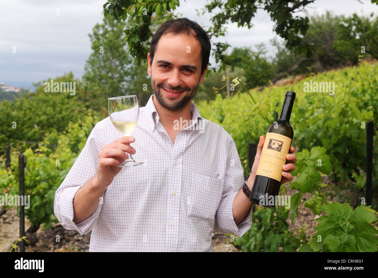 A man (an estate manager) holds up a glass of wine in an estate at the Douro Valley in Portugal. - Stock Image