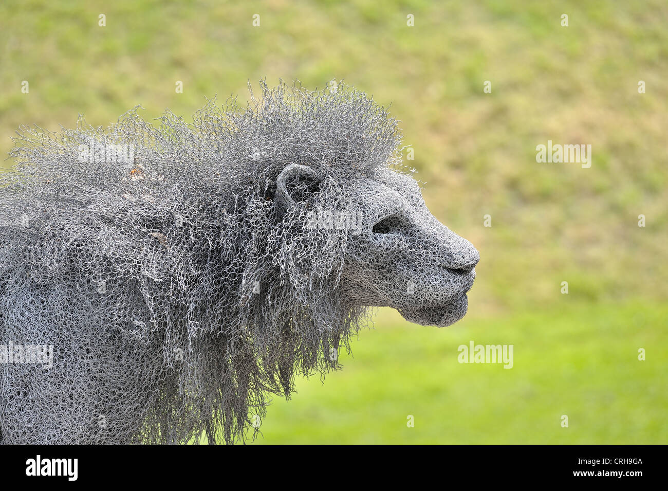 Lion Wire Sculpture Tower of London Stock Photo: 48938522 - Alamy