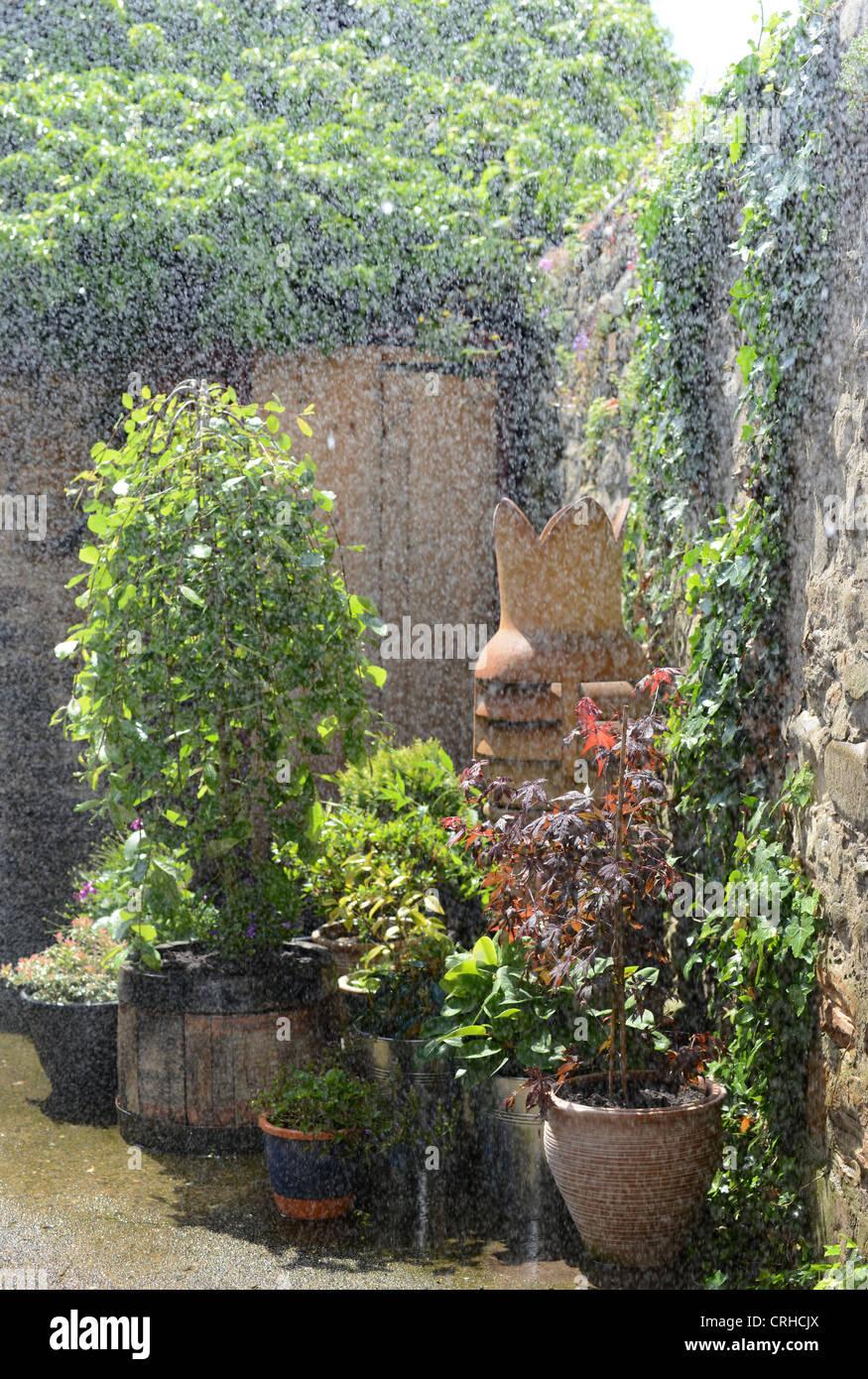 Pot garden during heavy rain while the sun shines. - Stock Image