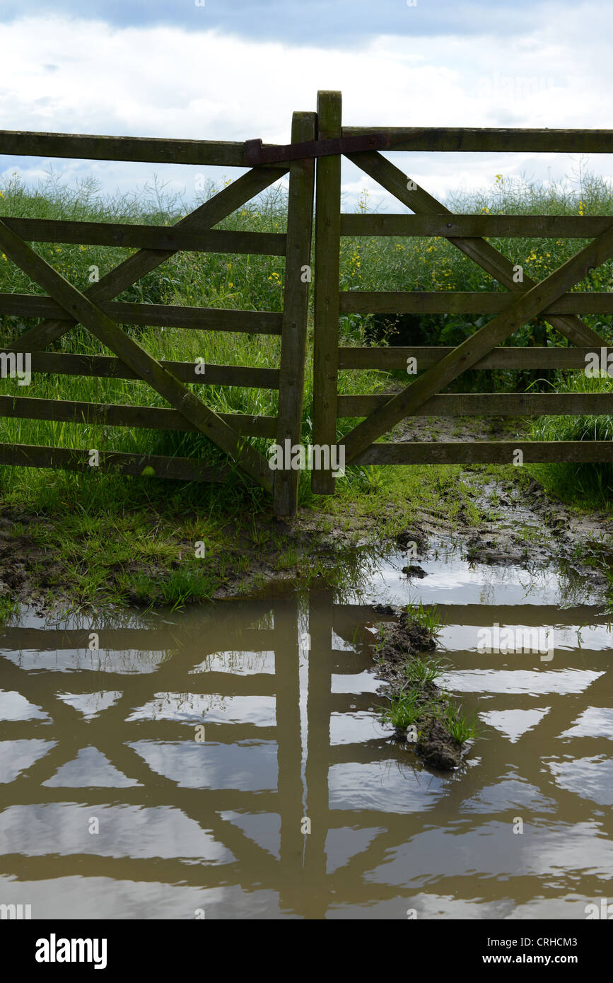 Closed farm gates reflected in puddles of water after heavy rain - Stock Image