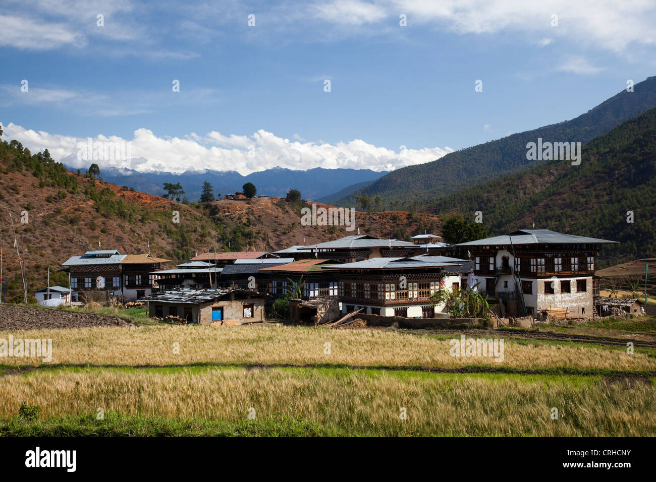 Morning sun on a a village in Punakha District, Bhutan near Chimi Lhakhang. - Stock Image
