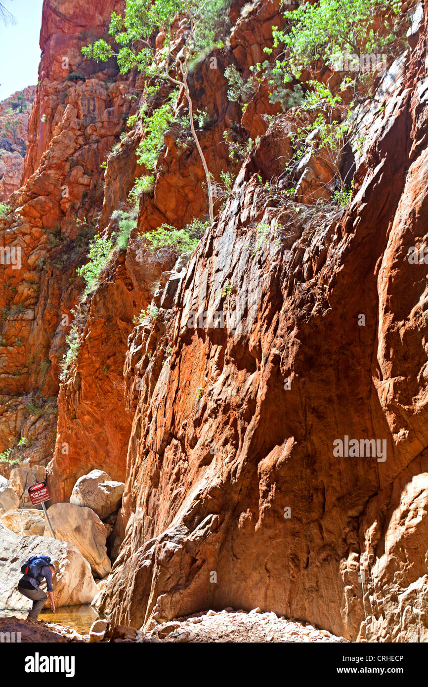 Woman in Standley Chasm in the West MacDonnell Ranges - Stock Image