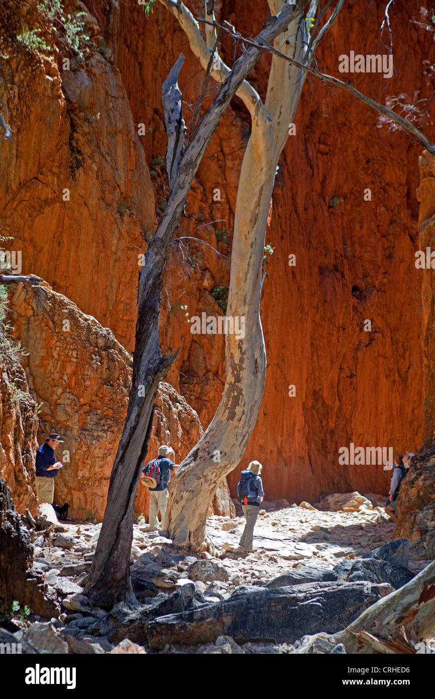 Bushwalkers at the entrance to Standley Chasm in the West MacDonnell Ranges - Stock Image