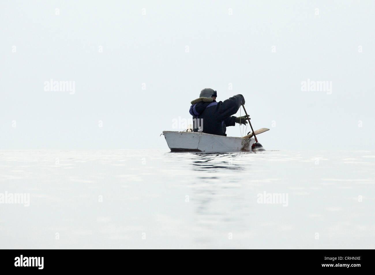 Inuit sealer getting a seal hunted down into his rowing boat, Greenland, Ostgroenland, Tunu, Kalaallit Nunaat, Scoresbysund, - Stock Image