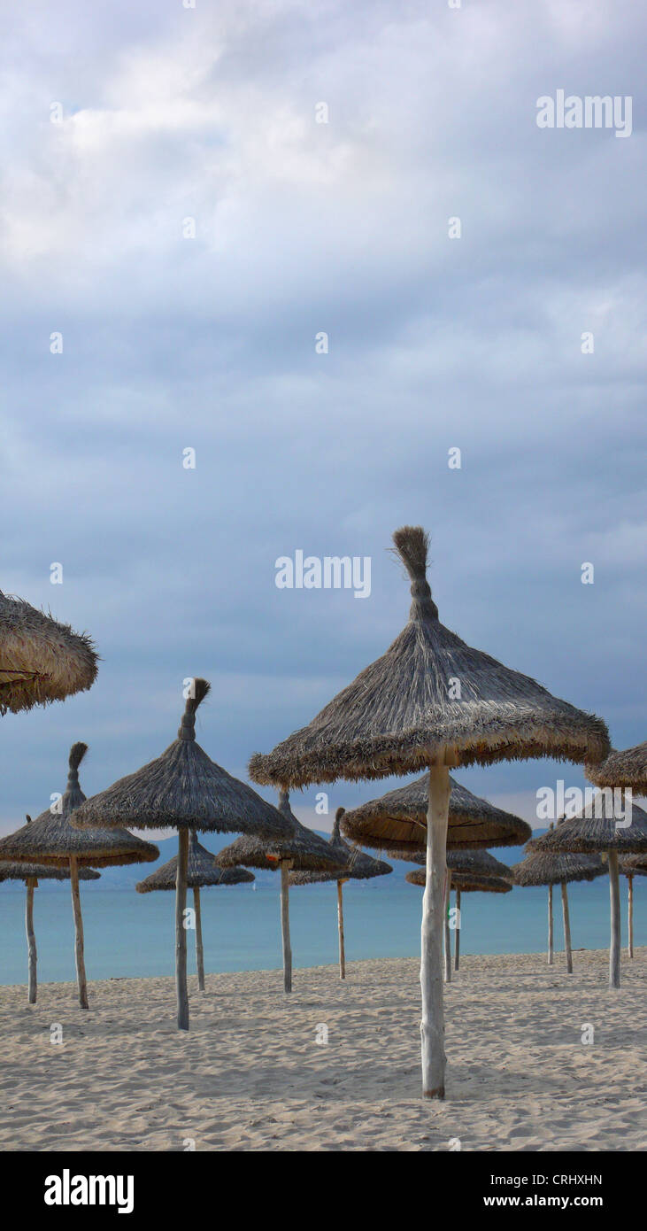 thatched sunshades on abandoned beach in winter, Spain, Balearen, Majorca - Stock Image
