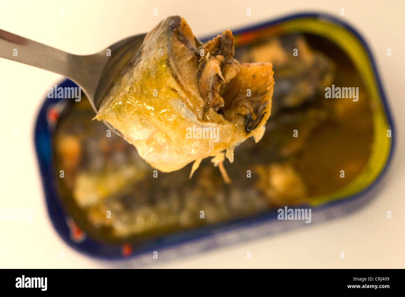 Can Canned Dietry food Fatty acids Fish Food stuff Foodstuff Oil Omega 3 Omega-3 Pilchard Pilchards Ringpull Sardines - Stock Image