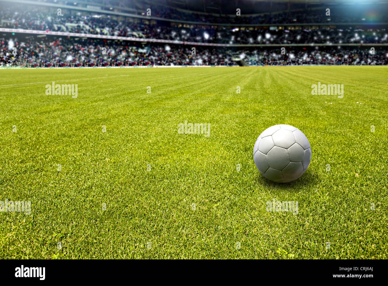 close-up shut of a soccer field surface - Stock Image