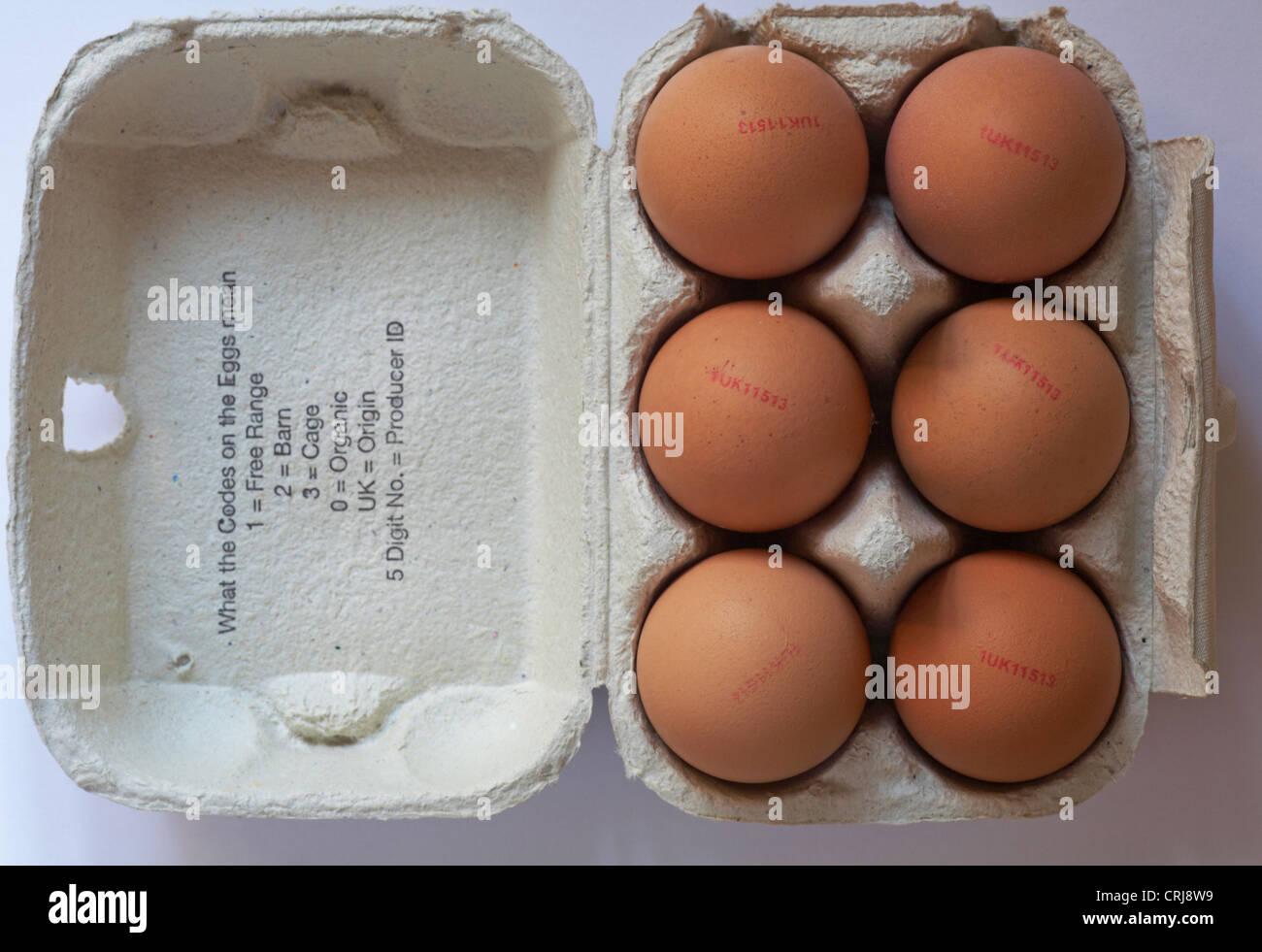 open egg carton of Very Large free range eggs from Pondhead Poultry Farm eggs with explanation of codes on eggs - Stock Image