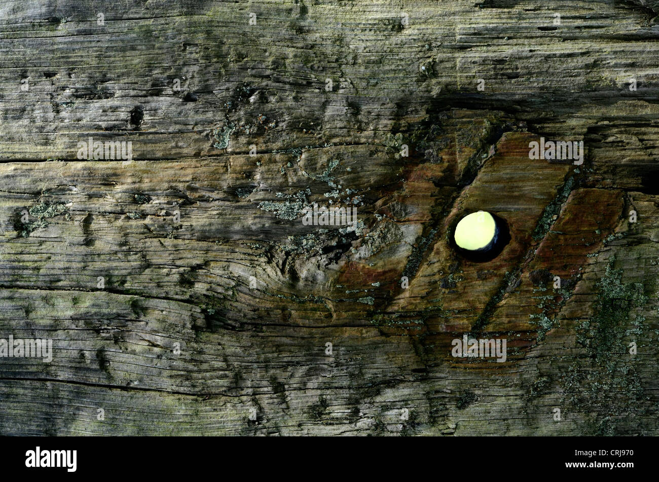 Weathered railway sleeper with vestigial trace of iron boltwork. Peep hole metaphor, what lies beyond, the unknown. - Stock Image