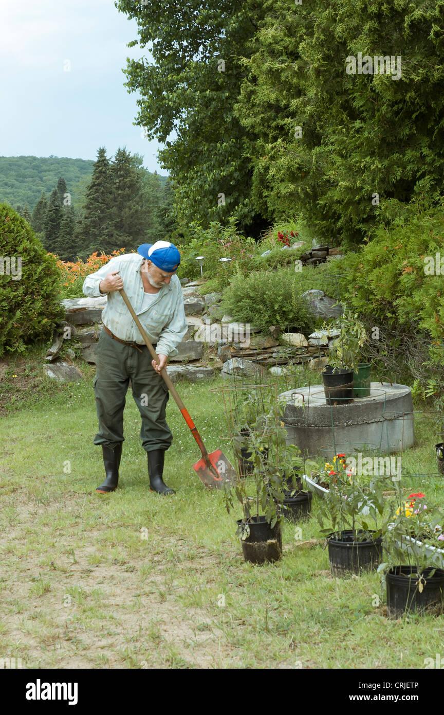 senior man shoveling and planting on his garden - Stock Image