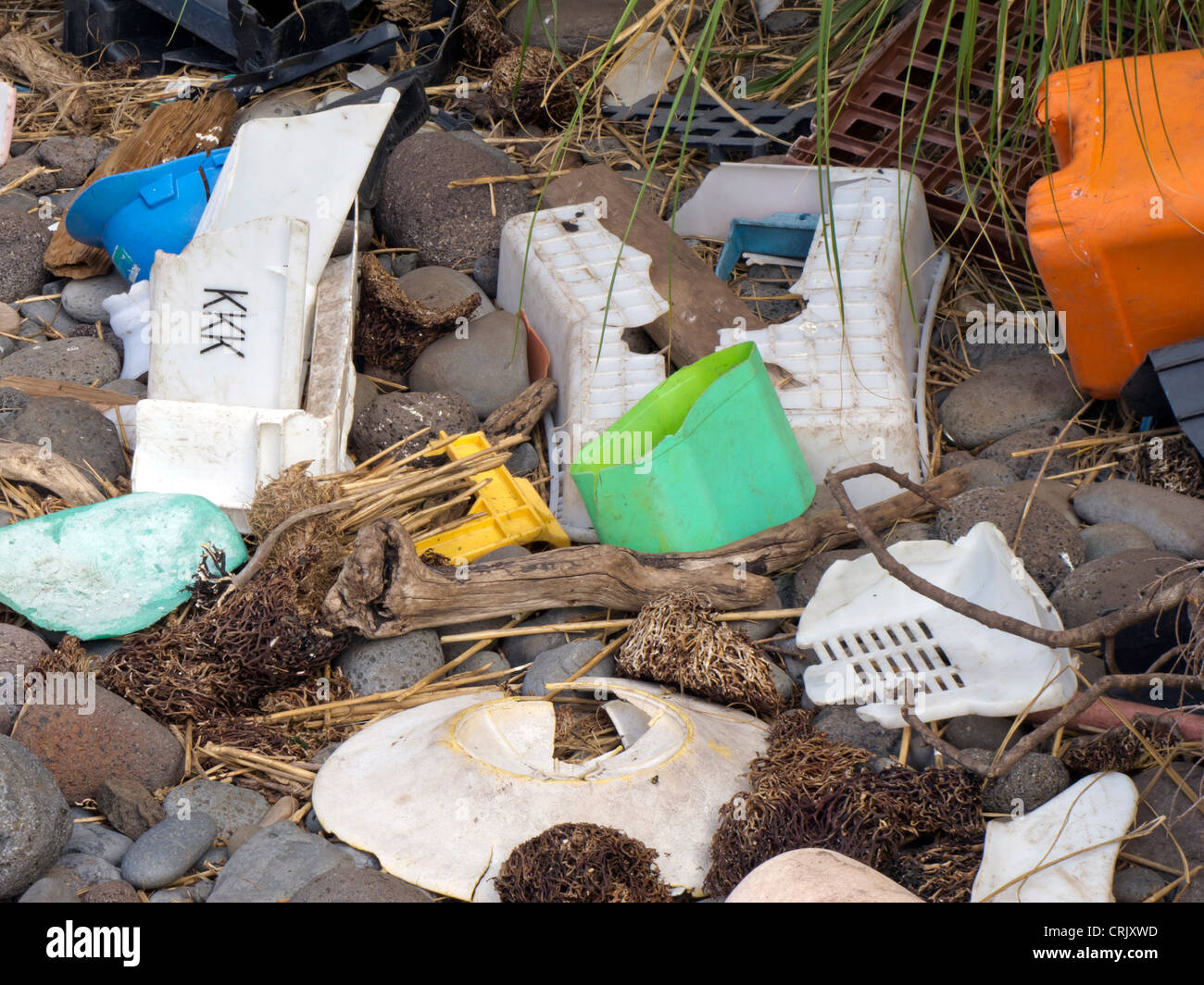 Plastic debris washed up on Inaccessible Island,South Atlantic Ocean - Stock Image