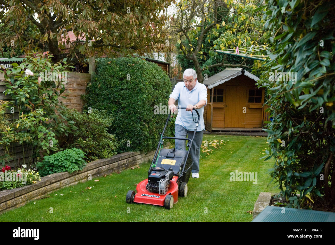 An elderly man maintains his garden by mowing the lawn. - Stock Image