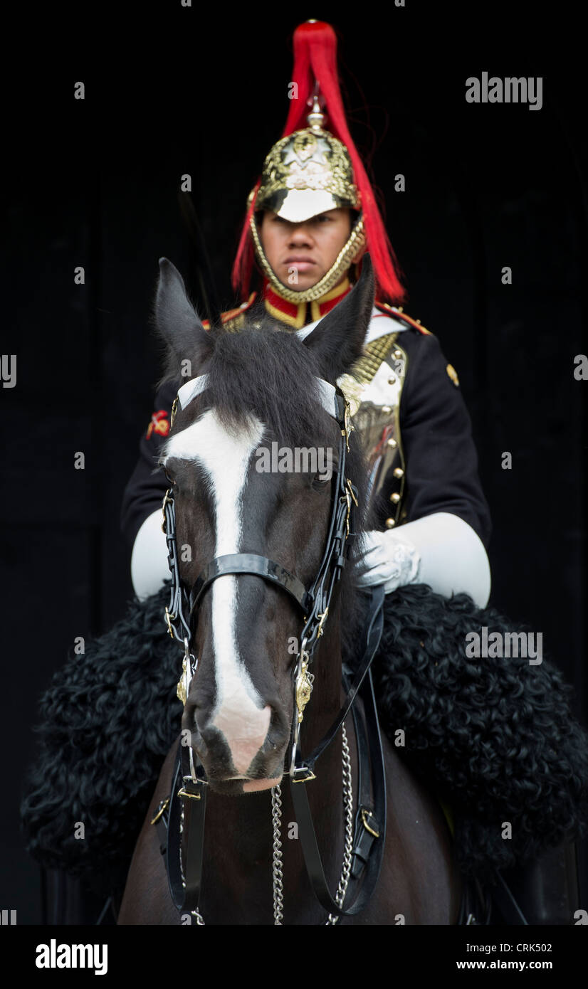 Household Cavalry / Blue and Royals on horseback against a dark background. London. UK. Selective Focus - Stock Image