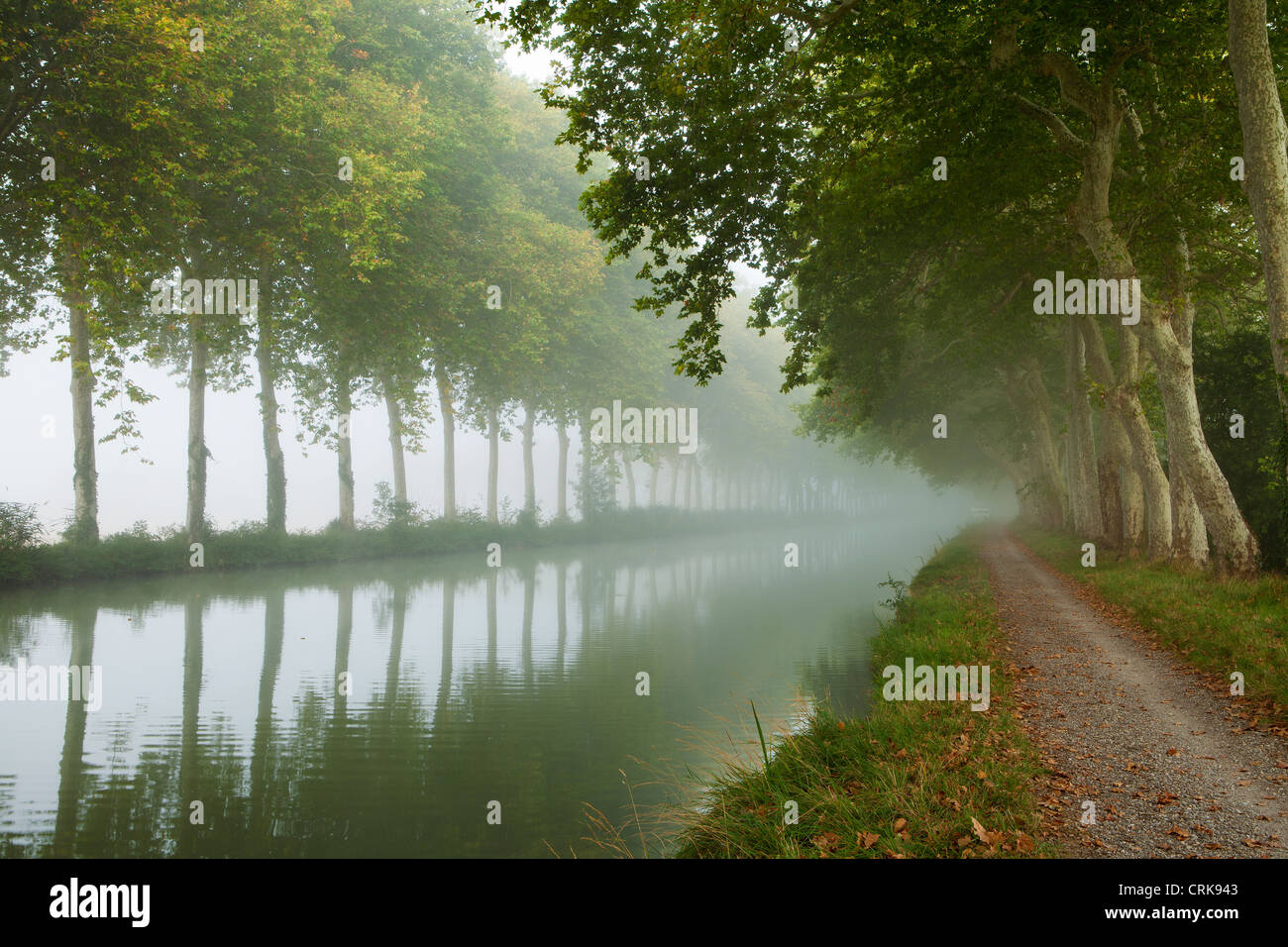 the Canal du Midi, nr Castelnaudary, Languedoc-Rousillon, France - Stock Image