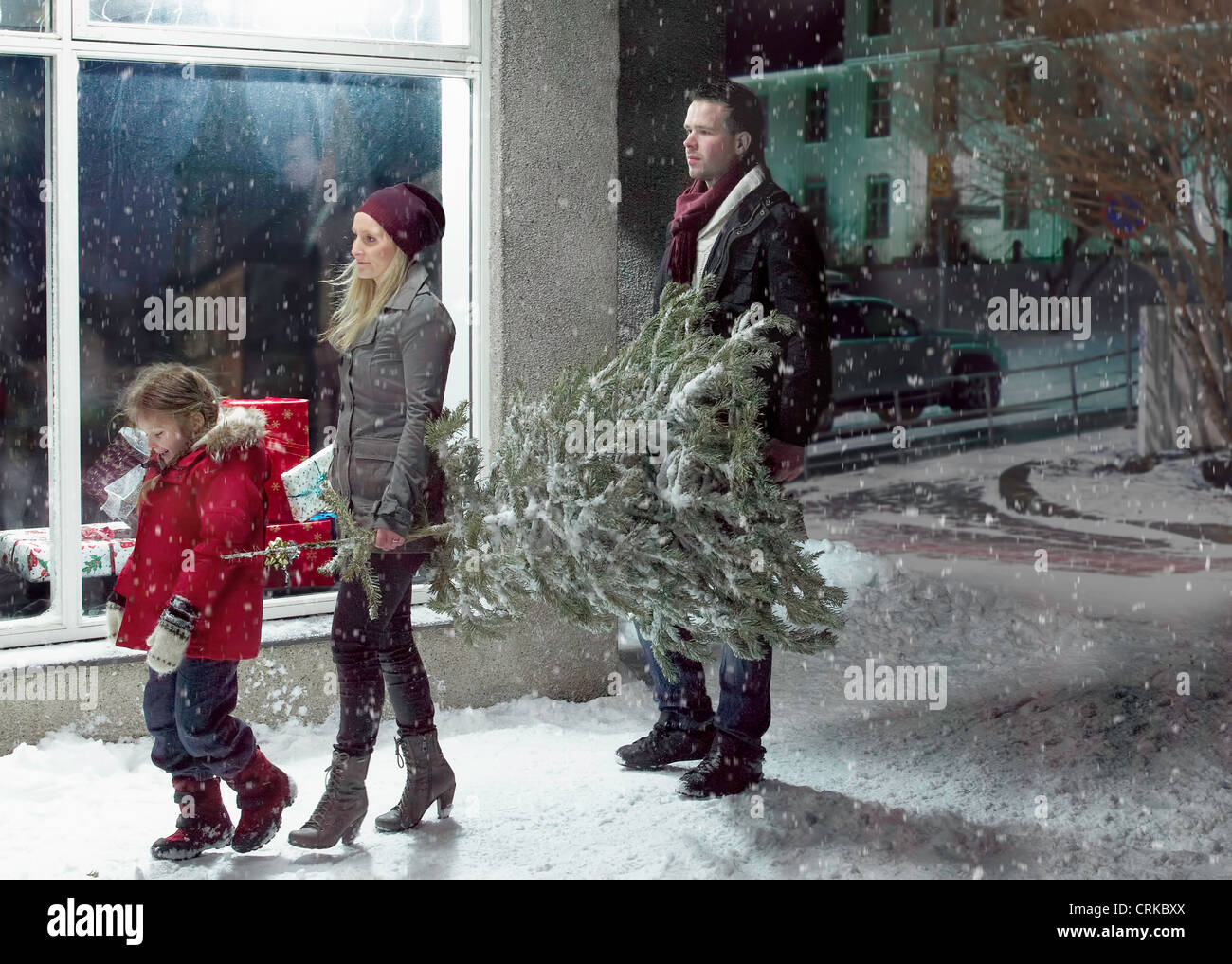 Family carrying Christmas tree in snow - Stock Image